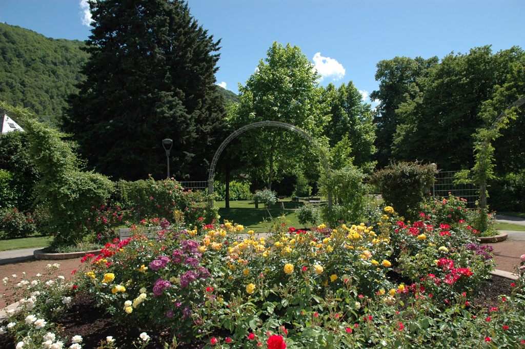 la roseraie du parc Reynier-Prat