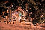 Neige et illuminations de Noël
